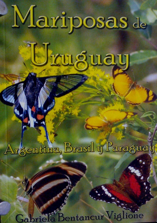 Mariposas de Uruguay